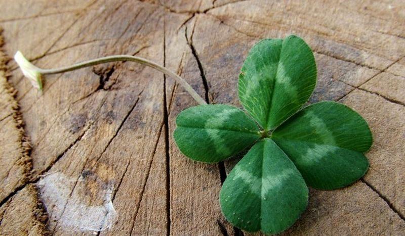 Овен Животът винаги предлага нов шанс, действайте смело