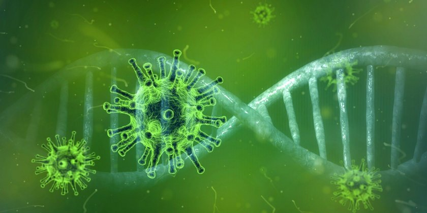 Съществува реална възможност новият коронавирус да се превърне