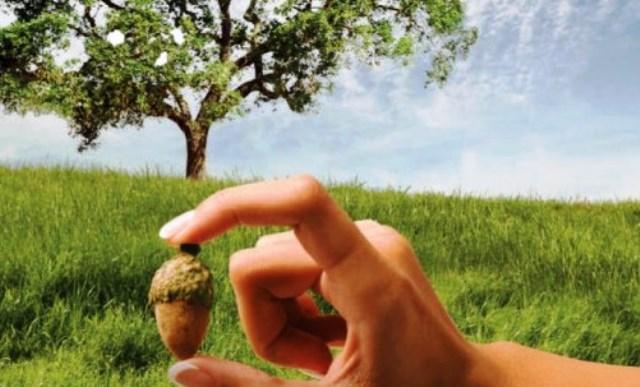 Законите на кармата: Великият закон Ще намерите в живота си
