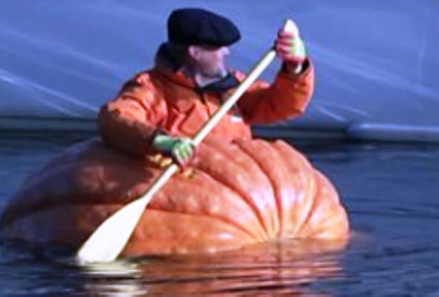 Снимка: Що За Чудо Е Това! Мореплавател Кръстосва Водите С Огромна Тиква!