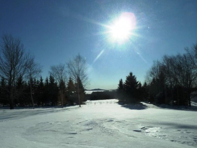 Какви са първите прогнози на световните метеоцентрали за зимния сезон.