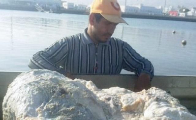 Рибари от Оман откриха огромно количество слузеста гадост на плажа.