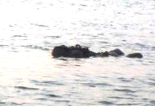 Според полицията лодката на двойка туристи се преобърнала в Женевското