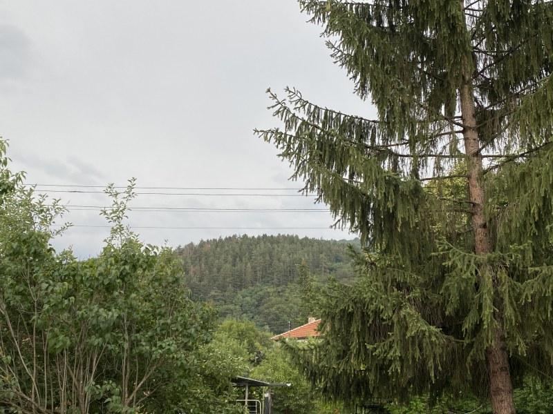 Интензивен дъжд валя над София. В този момент