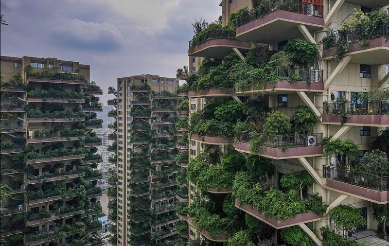 Презастрояването и загубата на зелени площи са едни