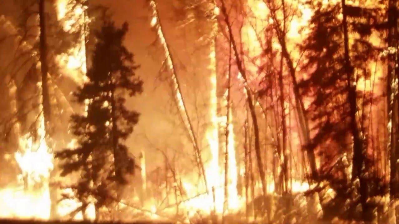 На помощ на казанлъшката пожарна дойде екип от Стара Загора.