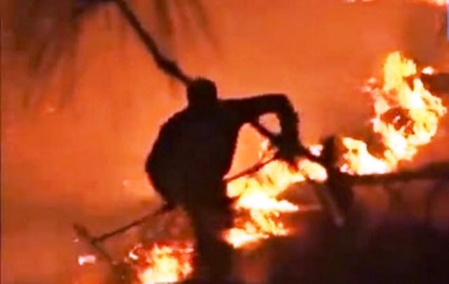 Огънят е обхванал и част от близката гора. На място
