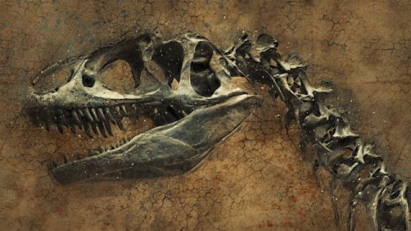 Палеонтолози откриха в Патагония останки от неизвестен вид