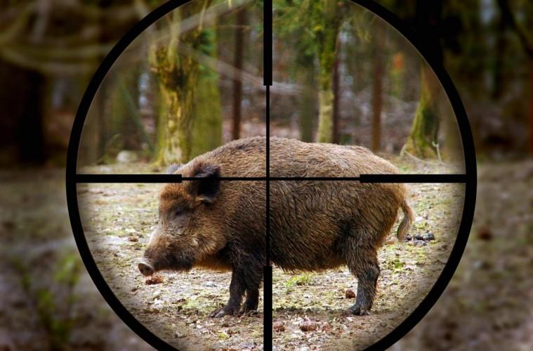Друг ловец, който заедно с ловната си дружинката в град