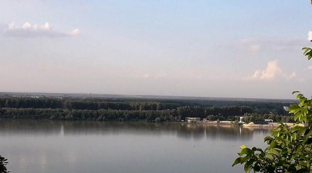 Мъжът разхождал кучето си в периферията на Дунавския парк, когато