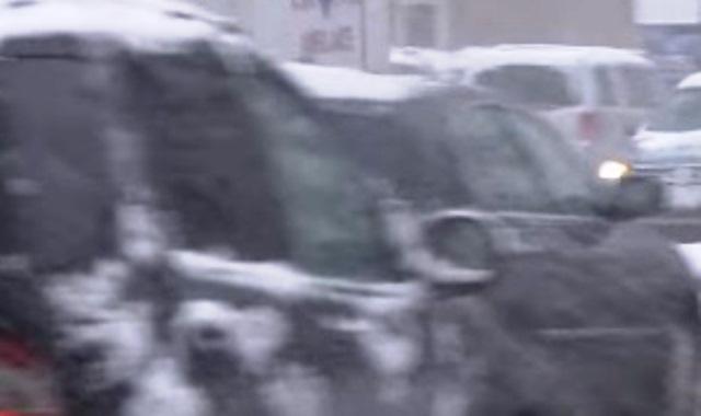 Шофьор е загинал, след като дърво рухва върху колата му