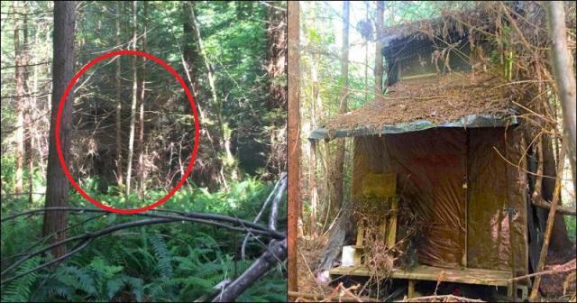 Снимка: Случайно Откри Странна Колиба В Дълбоката Гора! Надникнете Вътре И Ще Ви Увисне Ченето! Снимки!